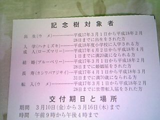 dvc00006.JPG
