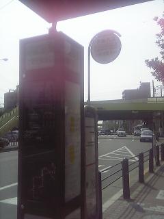 dvc00035_m.jpg