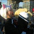 猫耳セリオス(ゲーム:クイズマジックアカデミー)