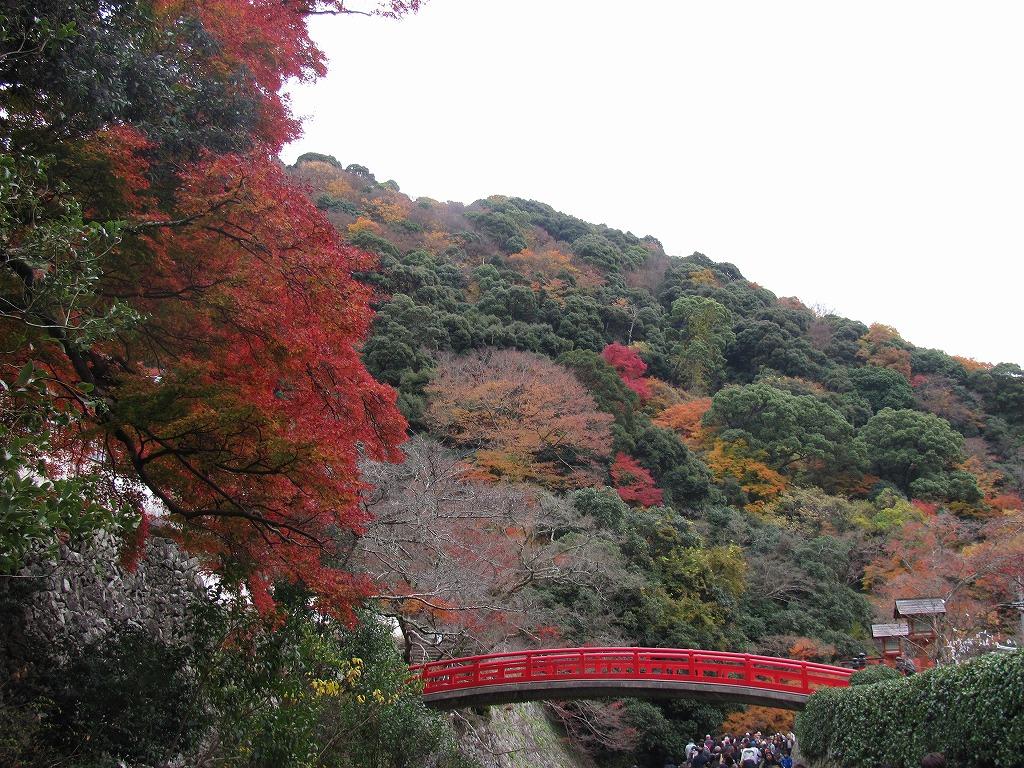 072)箕面の紅葉