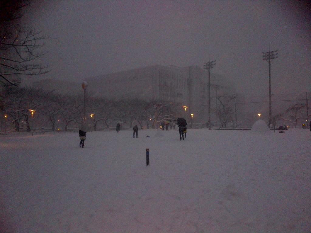 関東に大雪が降った日に