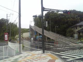 310)アップダウンクイズ とライよんちゃん